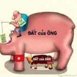 Việt Nam đứng nhóm đầu trong tham nhũng đất đai