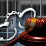 Luật sư tư vấn pháp luật Hình sự