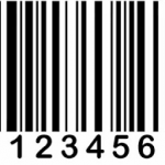 Mã số doanh nghiệp và nghĩa vụ sau khi thành lập