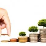 Hình thức chia lợi nhuận giữa các thành viên trong công ty