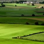 Thủ tục, chính sách pháp lý chuyển mục đích sử dụng đất