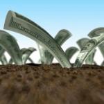 Tính tiền do chuyển mục đích sử dụng khi có nhiều thửa trong một tỉnh