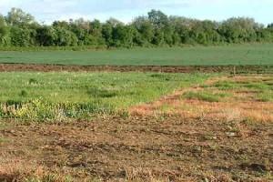Thời hạn sử dụng đất theo quy định của Pháp luật hiện hành