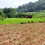 Điều kiện, thủ tục tách thửa đất