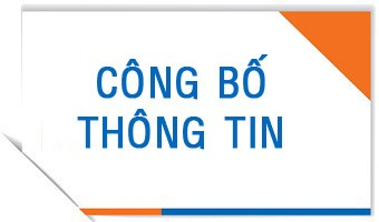 Doanh Nghiep Co Nghia Vu Cong Bo Nhung Thong Tin Gi