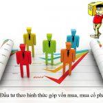 Tư vấn đầu tư qua góp vốn, mua cổ phần