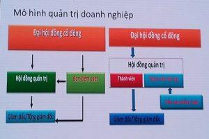 Phan Loai Co Dong Trong Cong Ty Co Phan Theo Luat Doanh Nghiep 2014