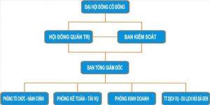 Co Cau To Chuc Trong Cong Ty Co Phan