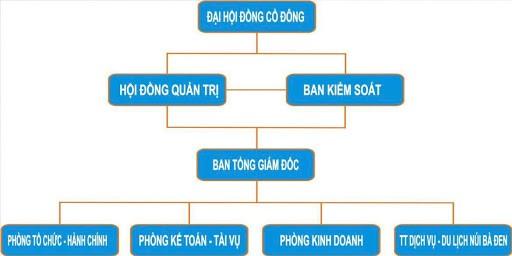 Cơ cấu tổ chức trong công ty cổ phần